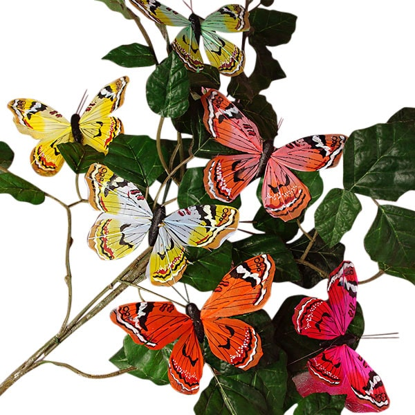 """5"""""""" Dale Assorted Feather Butterflies Feathers - Quantity: 12 - Embellishments Width: 5"""""""" by Paper Mart"""" 60901154"""