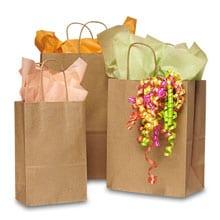 100 Recycled Kraft Ping Bags