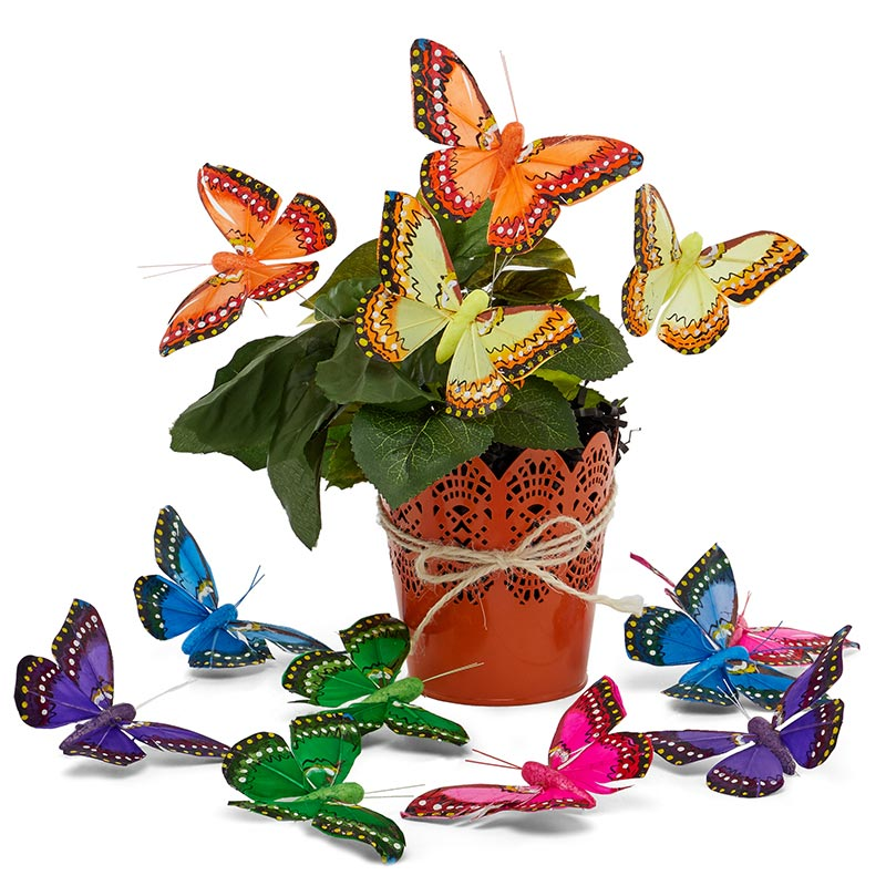 "4"" Assorted Angelic Feather Butterflies"