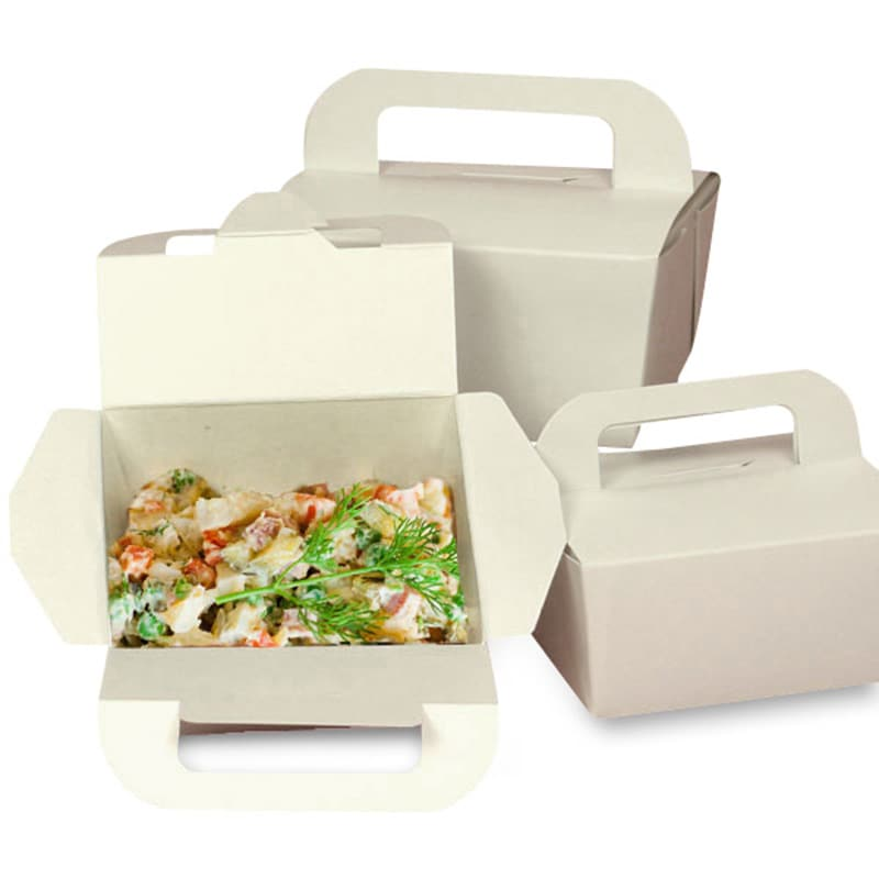 Eco Take-Out Box With Handles