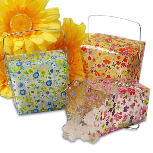 Floral Print Clear Take Out Boxes