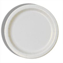colored party paper plates