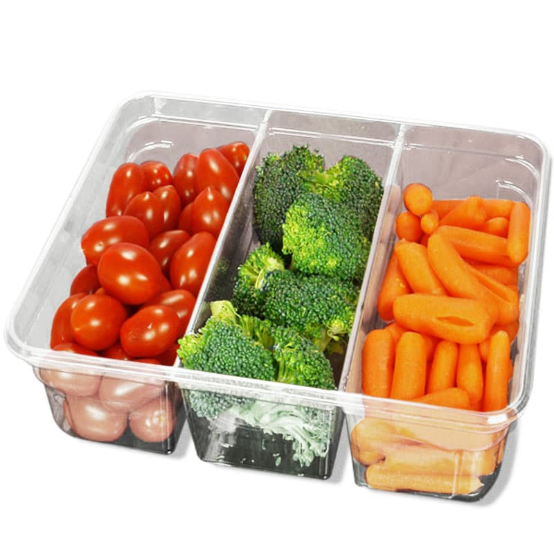 divided food storage container with lid