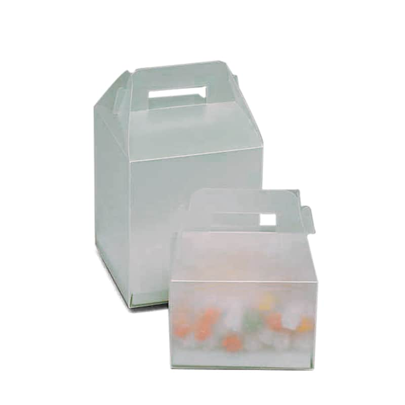 Frosted Plastic Gable Boxes