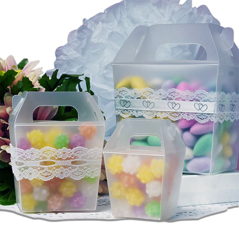 Frosted Plastic Tote Boxes